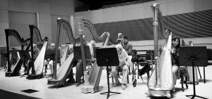 harp workshop Anne Morse Hambrock
