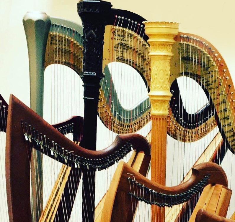 Harps of Anne Morse Hambrock