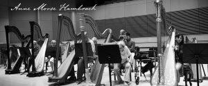 Anne Morse-Hambrock Instruction